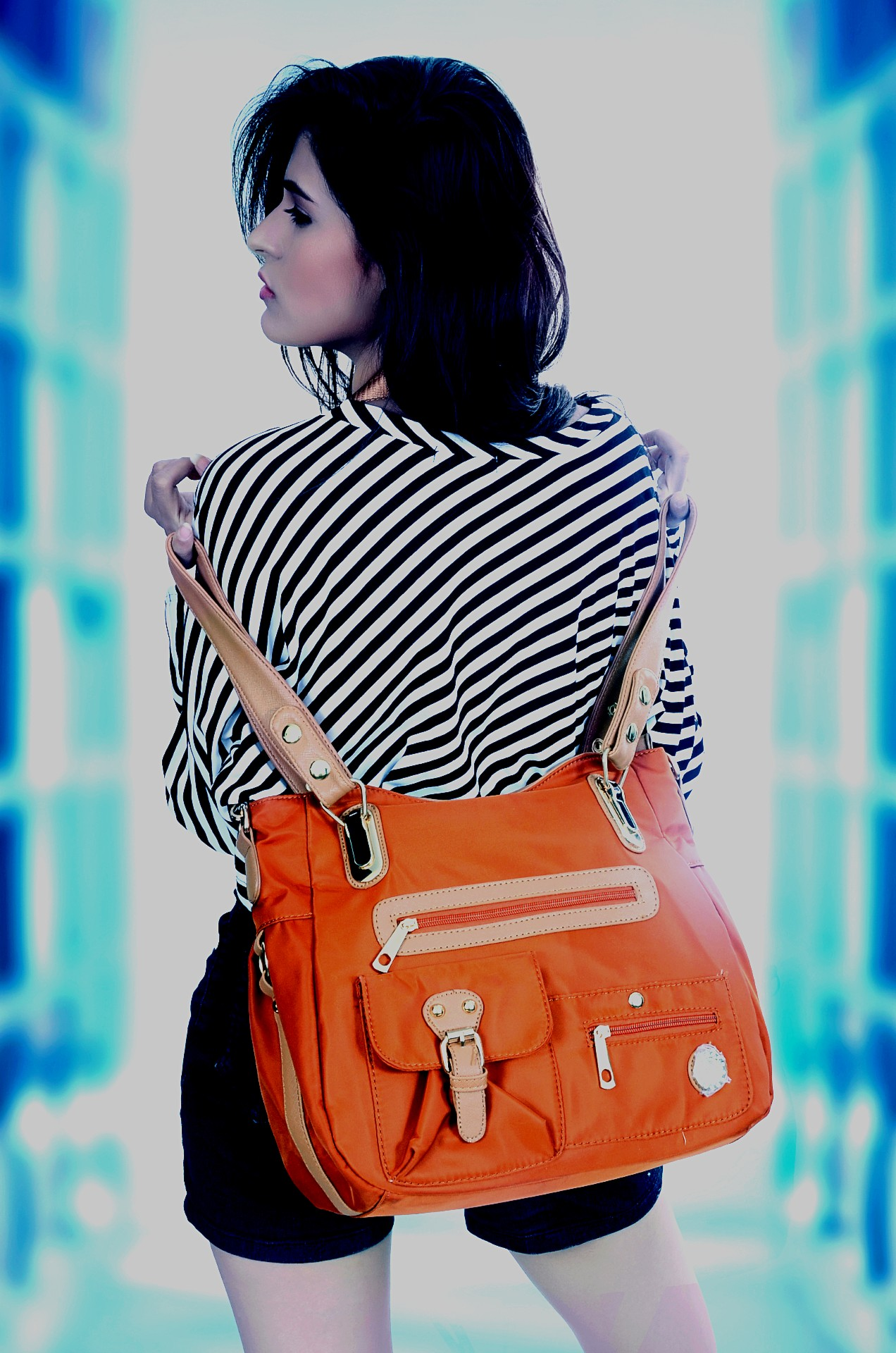 ladies purse handbag